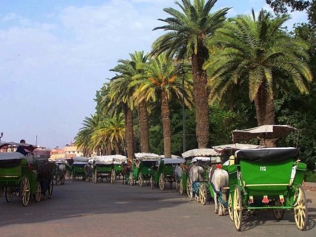 Ville A Visiter Autour De Marrakech